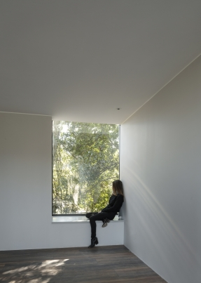 http://www.federicocairoli.com/files/gimgs/th-332_32_Casa en los arboles .jpg